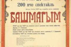 башмагым3 (2)